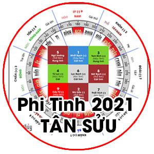 Cửu cung phi tinh 2021 Tân Sửu